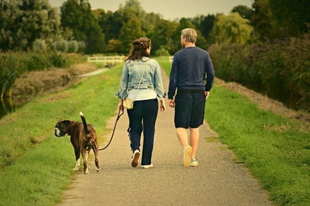 Una pareja pasea a su perro por el campo