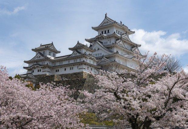 Castillo en Japón con cerezos en flor y cielo azul