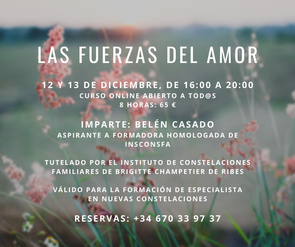 Cartel del curso online Las fuerzas del amor, 12 y 13 de diciembre.
