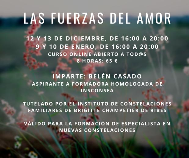 Curso de constelaciones familiares Las fuerzas del amor. 9 y 10 de enero, curso online abierto a todos.